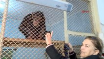 Antalya Dişleri Sökülen Şempanze Hayvanat Bahçesine Alındı
