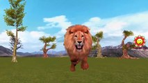 Lion Vs Buffalo And Lion Vs Deer Fight In Jungle | Lion Chasing Animals Fight To Death Epic Battles