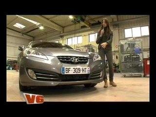 V6 n°3 (20/01/2011)