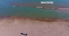 Guardamar playa regeneración tras temporal 4K
