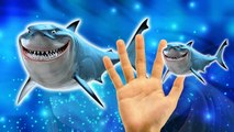 Sharks Cartoons Finger Family Children Nursery Rhymes | Sharks Finger Family Nursery Rhymes