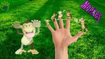 Finger Family Five Little Monkeys | English Children Nursery Rhymes | Finger Family Kids Songs