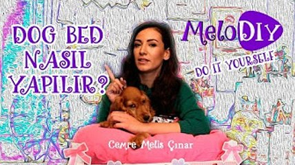 Dog Bed - Köpek Yatağı Nasıl Yaparım | Cemre Melis Çınar - MeloDIY