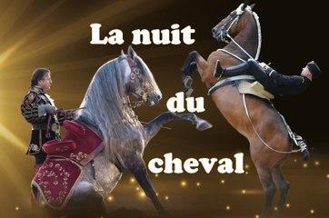 SALON DU CHEVAL 2016 : La Nuit du Cheval