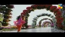 Bin Roye Episode 17 Full HD HUM TV Drama 22 January 2017