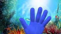 Sea Animals Finger Family Nursery Rhymes | Killer Whale Shark & Dolphin Finger Family Songs