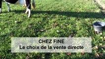 Chez Fine - le choix de la vente directe - Hervé Mérand