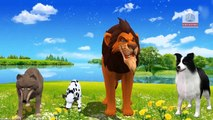 Top Animal Finger Family Rhymes | Latest Cartoon Animals Finger Family Songs | Nursery Rhymes