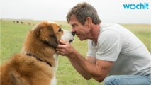 Producer Speaks Up And Defends 'A Dog's Purpose'