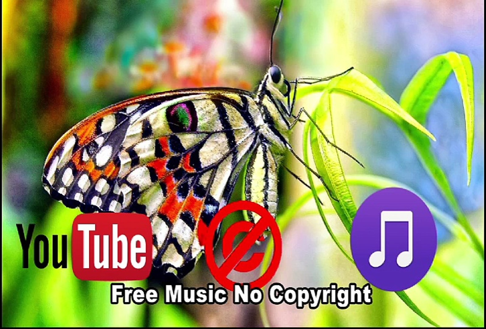 Relaxing Anamalie Music,Free Music