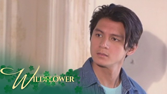 Wildflower: Diego continues to look for Ivy | EP 48