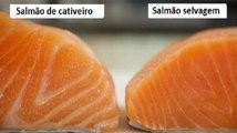 O Salmão é um dos alimentos mais tóxicos do Mundo! É isto que tens de saber o mais rápido possível!