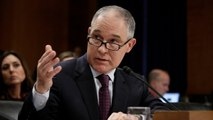 EPA chief Scott Pruitt doubts climate change consensus