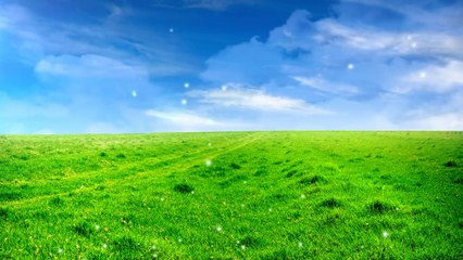 Nature|natural Beauty|Background easy worship loop|Beautiful videos