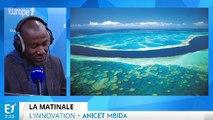 Réchauffement climatique : faire briller les nuages permettrait de sauver la grande barrière de corail
