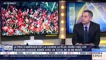 """""""Ready Cash est actuellement l'étalon n°1 dans le monde pour la production de trotteurs"""", Guillaume Maupas - 27/01"""