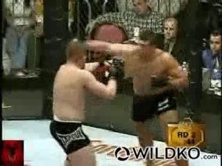 Les + beaux KO du free-fight