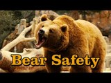 Simple Bear Safety Tips: a SKETCH by UCB's The Punch