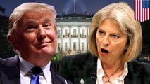 Trump May meeting: President Trump meets with UK Prime Minister Theresa May - TomoNews
