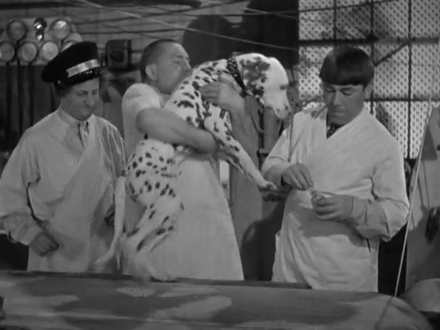 Image result for 035 The Three Stooges: Mutts To You (1938)