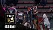 TOP 14 ‐ Essai Paul PEREZ (ST) – Toulouse-Pau – J17 – Saison 2016/2017