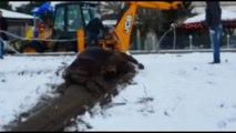 Düzce Ithal 6 Büyükbaş Hayvan Sahile Vurdu