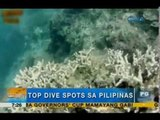 To dive for: Philippines' top diving spots | Unang Hirit