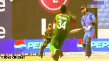 TOP INSANE  CRICKET FIGHTS - INDIA - 2016 - Downloaded from youpak.com