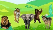 Animals Cartoons Finger Family Children Nursery Rhymes Animals Finger Family Rhymes for Kids