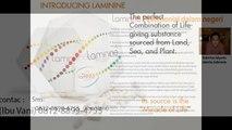 0812-8899-4755 (Ibu Stevani),Harga Paket Laminine,Harga Obat Laminine