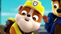 Paw Patrol Full Episodes ✦ Pups Save the Penguins - Pups Save the Parrot