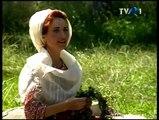 Gheorghita Nicolae - Plin e codrul de voinici