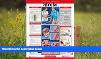PDF  Stroke Explained DISEASES EXPLAINED For Ipad