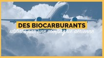 Une compagnie aérienne va utiliser des biocarburants pour faire voler ses avions