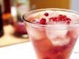 Pomegranate Ginger Spritzer Recipe