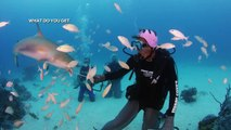 Scuba Diving with Sharks outside of a Bahamas Blue Hole