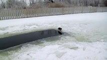 Ce chat expert en pêche sur glace remarque que quelque chose bouge dans l'eau, mais soudain...