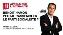 Benoît Hamon peut-il rassembler le parti socialiste ?