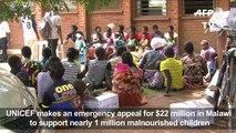 UNICEF: Malawi needs $22m to fight child hunger