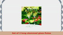 Hortense B Hewitt Wedding Accessories Platinum Swirl Champagne Toasting Flutes Set of 2 e437a6a0