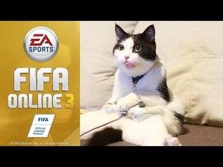 Theycallmemeaow | เส้าหลินท้าดวล FIFA Online3