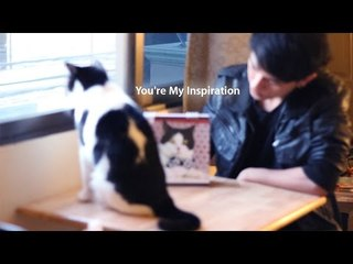 Theycallmemeaow - You're My Inspiration