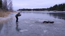 Ils aident un élan coincé dans un lac gelé