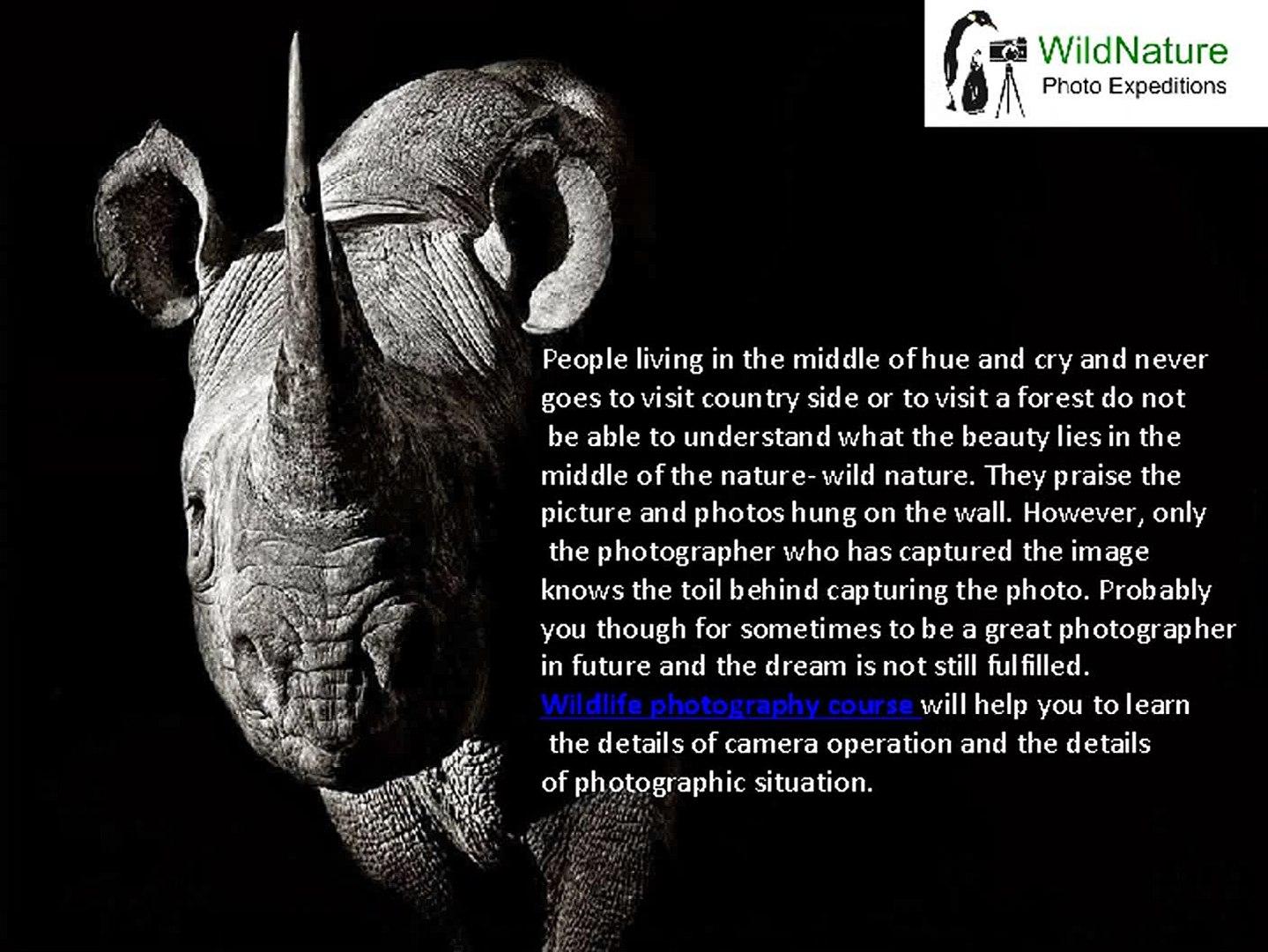wildlife photography course  wildlife photography workshop