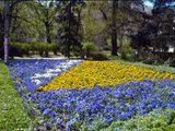 Bosna i Hercegovina - zemljo moja