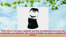 Sminiker Acrylic Red Wine Aerator Wine Pourers Wine Gift Set Aerate and Perfect Your Wine ffcbf843