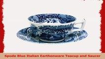 Spode Blue Italian Earthenware Teacup and Saucer b05900c6