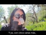 CINCO CANAS MAS (Trigo limpio)