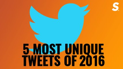 Craziness Redefined | 5 Most Unique Tweets of 2016