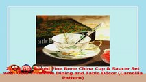 Zuwit Gift Boxed Fine Bone China Cup  Saucer Set with Gold Trim Fine Dining and Table 9287d94a